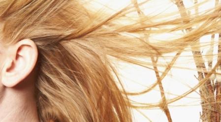 שיער יכול להתחדש במקרה שהזקיקים לא נעלמו.