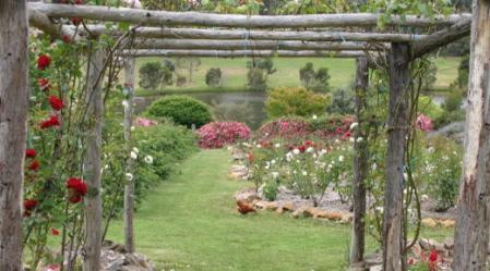 רק גירוי של כל החושים כולם – יגרום לחוויה השלמה של הגן המעוצב על פי כללי הפנג שואי.