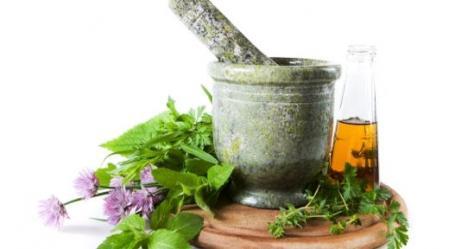 כל צמח שמסייע בריפוי או במניעה של חולי כלשהו, עשוי לזכות בשם 'צמח-מרפא'.